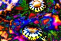 Upside Down Jellyfish - Yellow Drip