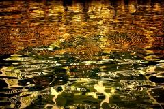 Monet In The Keys II