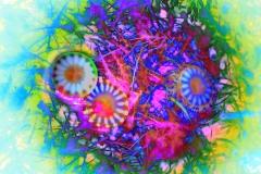 Pink Medusas