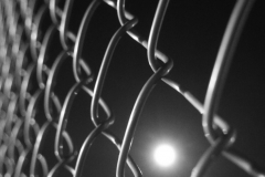 Moonlight In A Fence