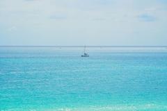 Fresh Mint Sailing 3