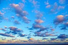 Salvador's Sunset