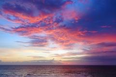 Orange Wing Sunrise